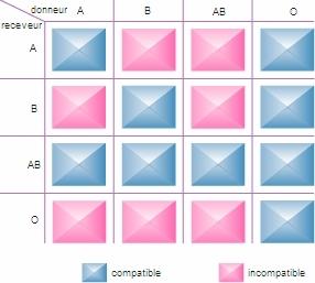 Encyclopédie Larousse en ligne - groupe sanguin