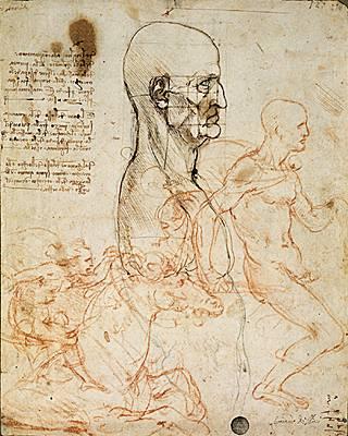 Léonard de Vinci, études