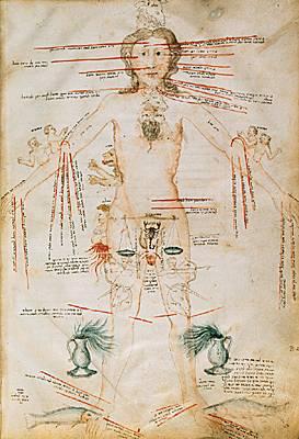 Encyclop die larousse en ligne r abraham homme zodiaque - Point de saignee ...