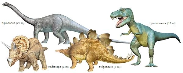 Problèmes d'affichage du dinosaure (plusieurs images) [OK]