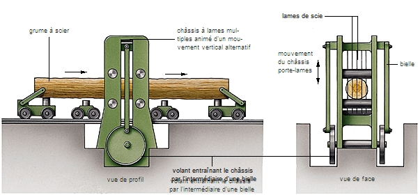 Encyclopédie Larousse en ligne bois francique bosk buisson # Bille De Bois De Sciage