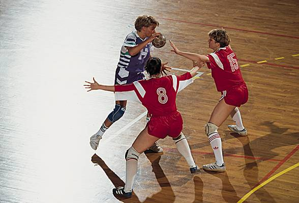 Handball, Tournoi de France, 1991