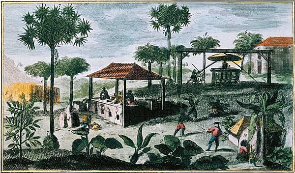 histoire-des-antilles