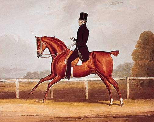 Le duc de Wellington à cheval