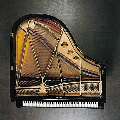 Encyclopédie Larousse En Ligne - Piano À Queue