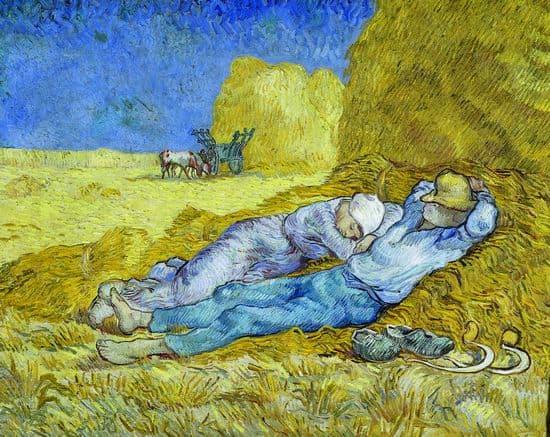 Extrêmement Encyclopédie Larousse en ligne - Vincent Van Gogh UM91