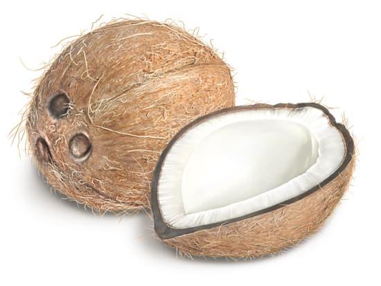 Comment dessiner une noix de coco - Dessin noix de coco ...