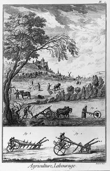 Planche extraite de l'Encyclopédie : agriculture et labourage