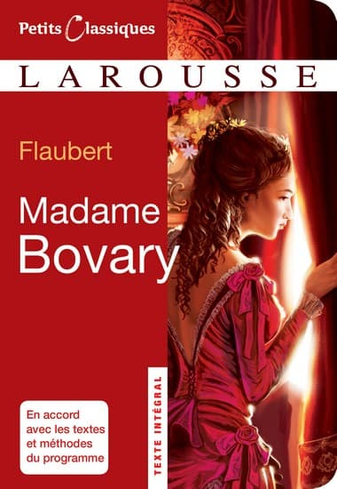 Gustave Flaubert, Madame Bovary