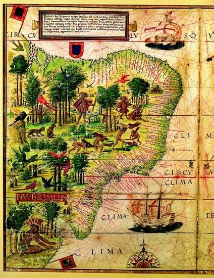 Voyage au mozambique part 3 et fin - 3 2