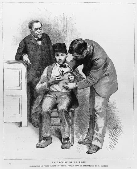 Top Encyclopédie Larousse en ligne - Pasteur : la vaccination contre  YG59