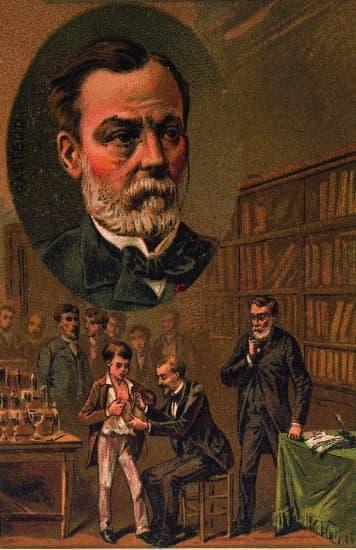 Pasteur et la vaccination