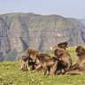 Massif du Simien